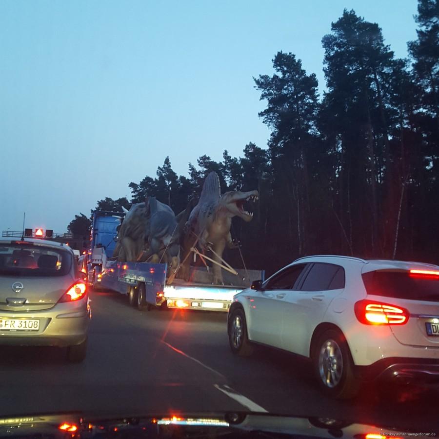 Dinos Verursachen Verkehrschaos