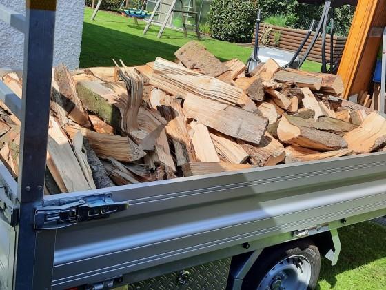 Holz gefahren